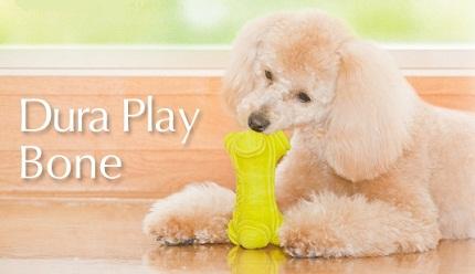 犬用おもちゃデュラプレイ