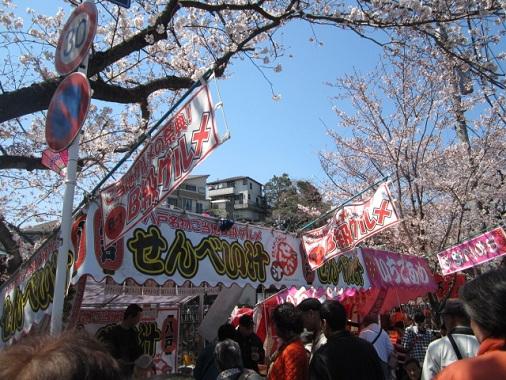 12-hanami3.jpg