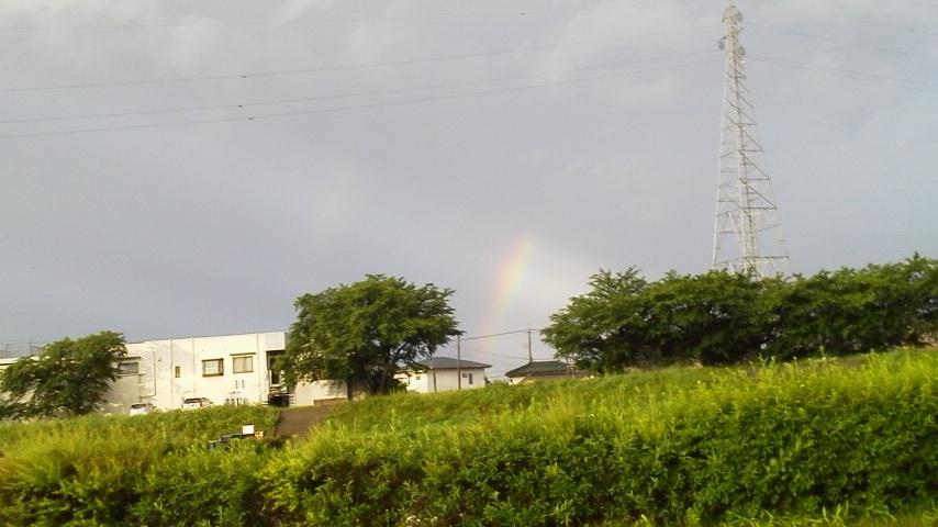 さくら!虹だよ☆
