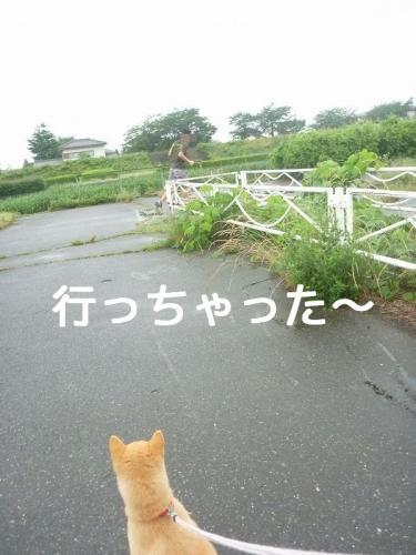 WiKvwblog.jpg