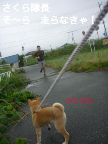 zFDokblog.jpg